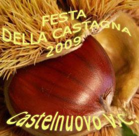 Tutte le feste del 2009 di Castelnuovo di Val di Cecina